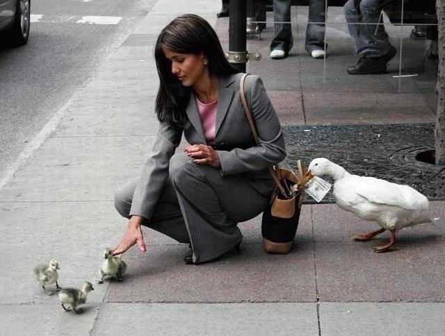 Как избежать ограблений в Париже