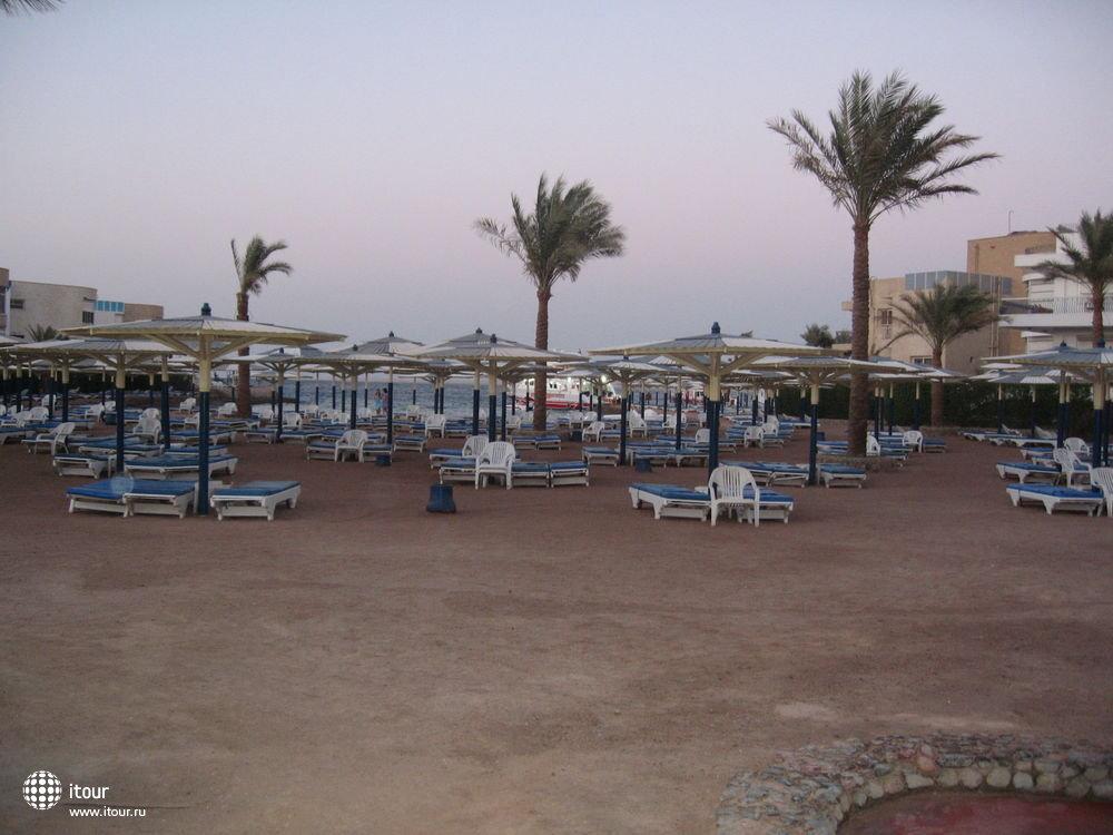 SEA GULL, Египет