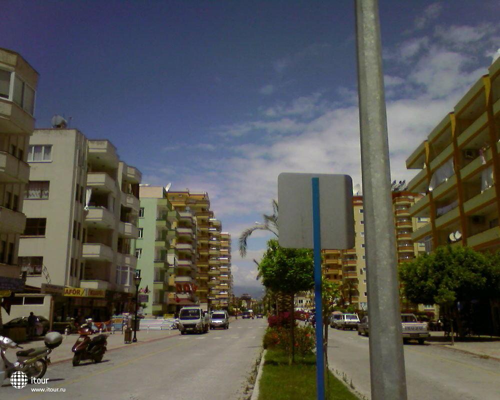 Green Peace, Турция.Махмутлар
