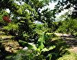 Парк и пещера Роаринг Ривер