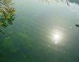 Пресноводное Озеро Курна
