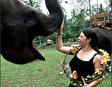 Парк Слонов