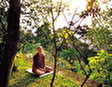 Международный Буддистский Центр Парамита