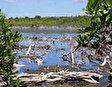 Национальный Парк Армандо Бермудеса и Хосе дель Кармен Рамиреса