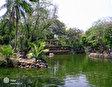 Зоологический и ботанический сад