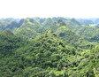 Национальный парк Ло Го Ха Мат