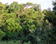 Национальный парк Саликата