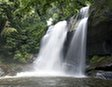 Национальный парк Удзунгва-Маунтинс