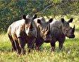 Национальный парк Мкомази