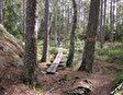 Общее описание Национальный парк Тиведен