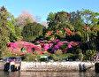 Ботанический сад имени Лоренцо Рота