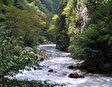 Река Гега