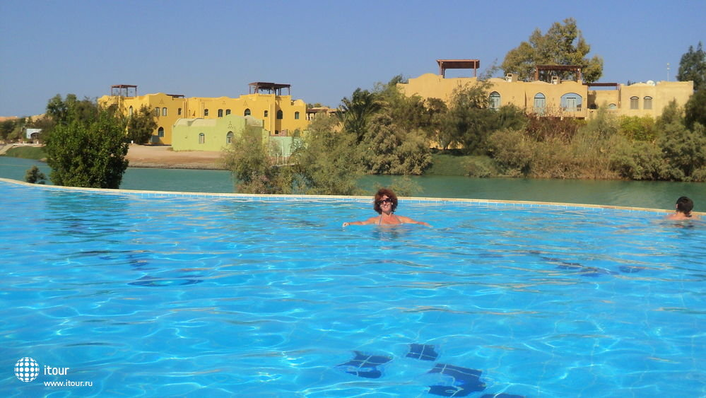 arena-inn-басейн отеля