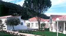 Хаммам-Бургиба