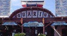 Ресторан AQUARIUS