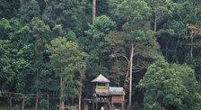 Национальный парк Кат Тиен