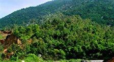 Гора Дабиа