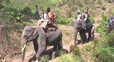 Национальный парк Кхао-Яй