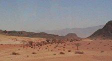 Долина Тимна
