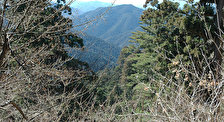 Гора Коя-сан