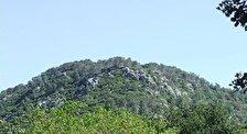 Национальный Парк Гора Кармель