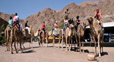 Верблюжье Ранчо