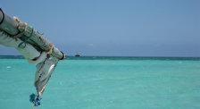 Национальный морской парк Мпунгути