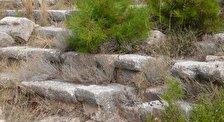 Руины античных городов Колофон и Нотион