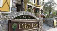 Ресторан Оливковое Дерево