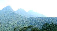 Национальный пакр Там Дао