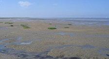 Морской национальный парк Wadden