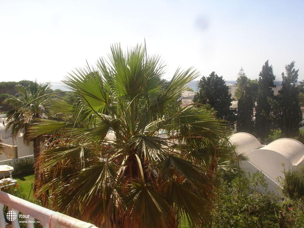 sun-holiday-beach-club-172842