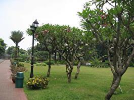 Филиппины - Манила - парк