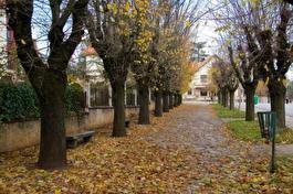 осень по европейски