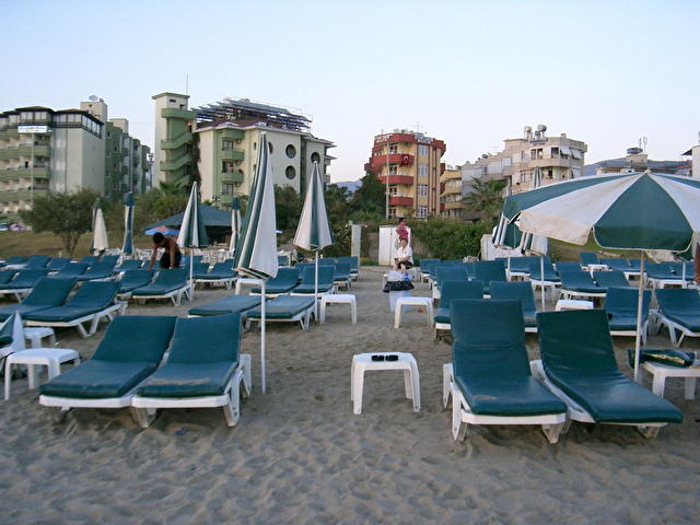 BEGONIA, Турция