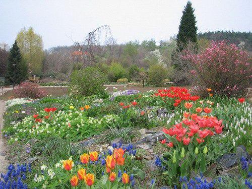Ботаническая экскурсия