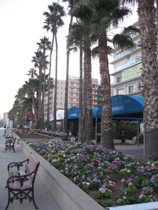 Phinikoudes Promenade