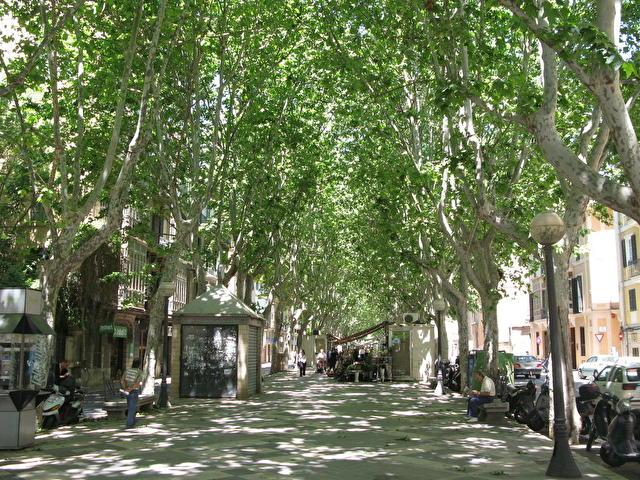 Palma de Mallorca - улица Рамбла