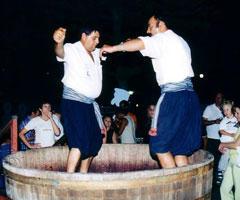 Wine Festival in Limassol