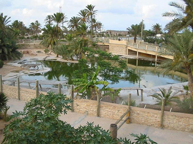 Crocodile's reserve