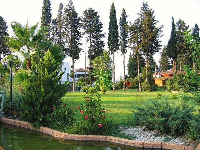 KEMER DREAM, Турция, городской сад по дороге к пляжу