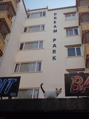 dream-park-отель
