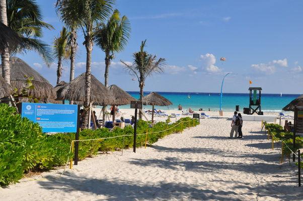 sandos-playacar-beach-resort-&-spa-178342