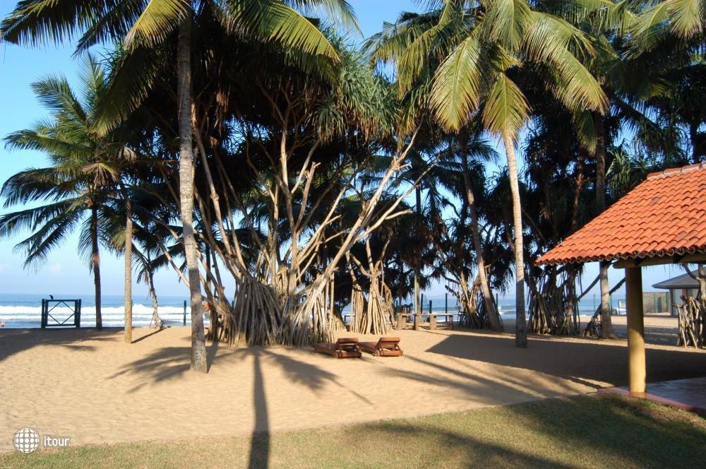 Hibiscus Beach Hotel 1
