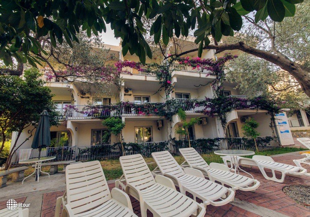 Villa Olive 3