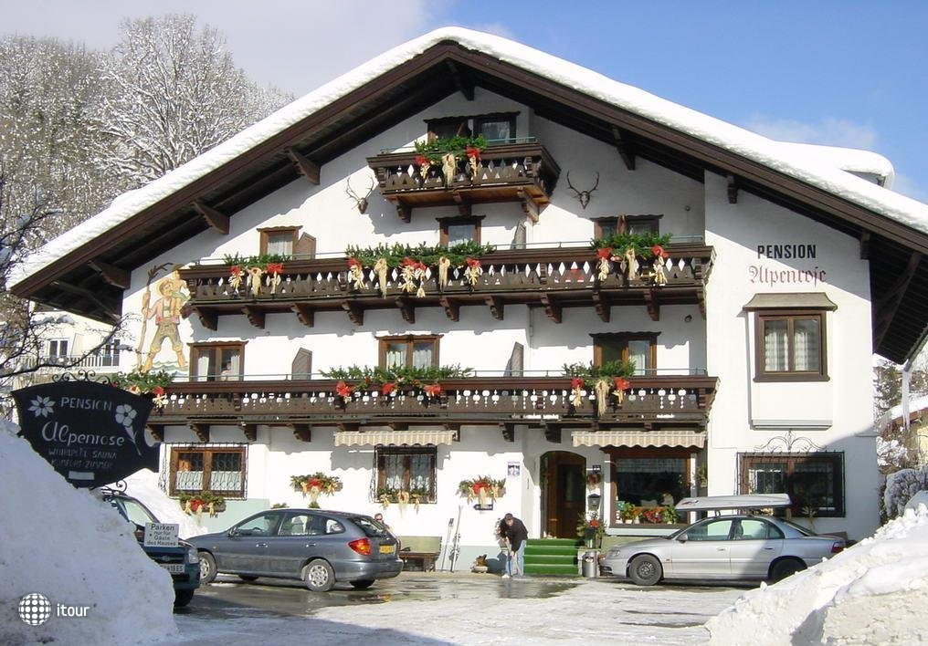 Alpenrose Pension  1