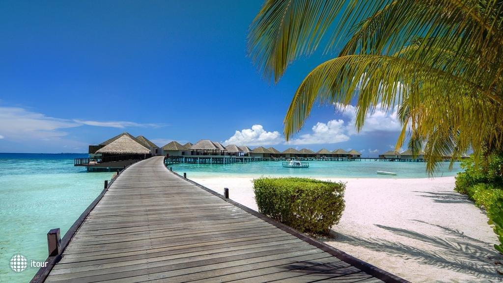 Adaaran Prestige Vadhoo (ex. Vadhoo Island Resort) 4