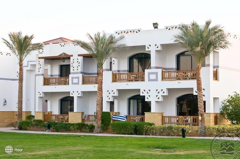 Otium Hotel Amphoras Sharm (ex. Shores Amphoras) 8