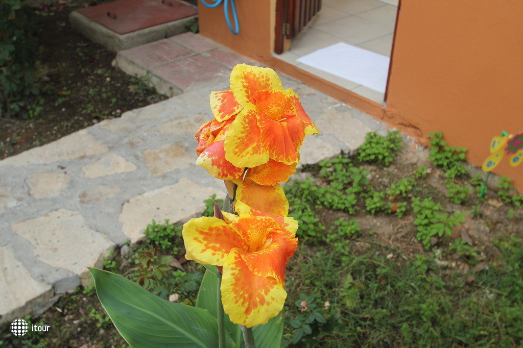Ozlem Garden Hotel 3