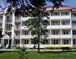 Kashin